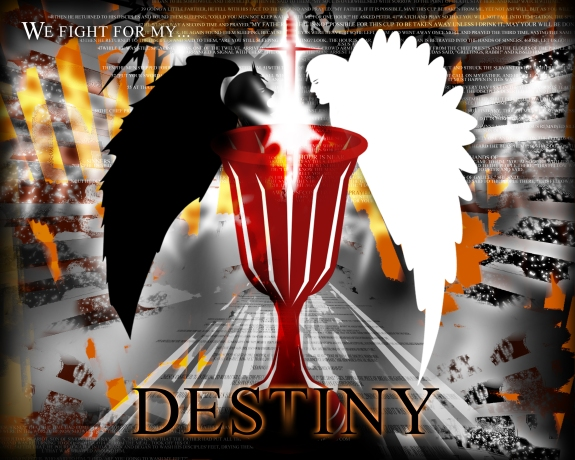 We Fight For My Destiny