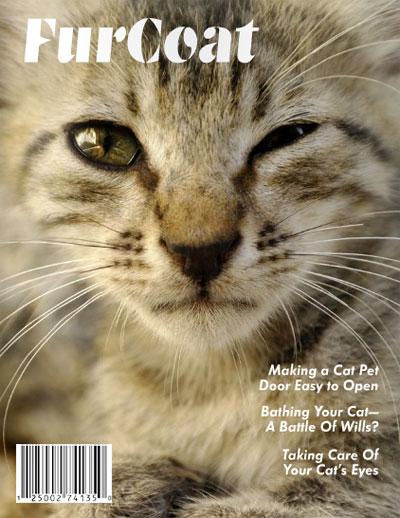 FurCoat magazine design by Vadimages